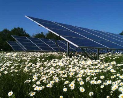 Le solaire en France va doubler en deux ans (Frédéric De Monicault, Le Figaro)