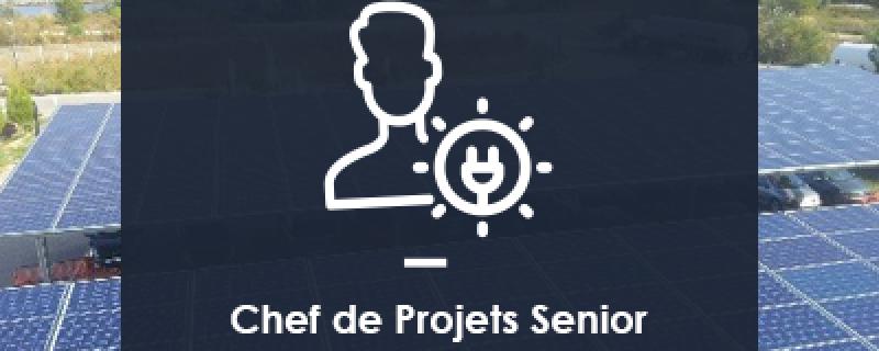 Chef de Projets Senior Développement Photovoltaïque de Centrales au Sol (H/F)